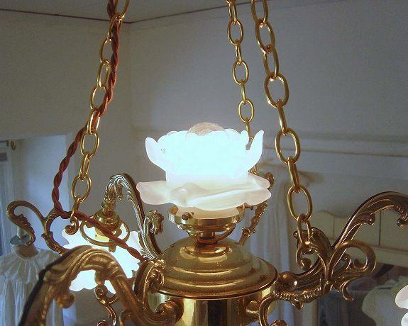 白バラのシャンデリア